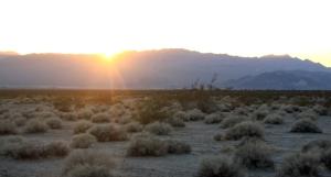 Desert equinox