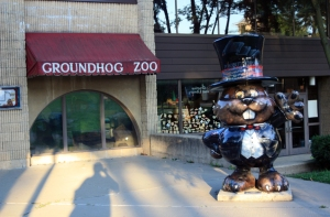 groundhog zoo