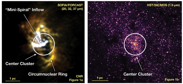 THe central black hole in our galaxy with the circumnuclear ring, as imaged by FORCAST aboard SOFIA