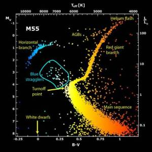 Color-Magnitude Diagram for M55. Once the stars have left the main sequence, they move up and to the right (cooler and brighter) to become red giants. After the helium flash, they migrate across the Asymptotic Giant Branch (AGB) and Horizontal Branch to become blue and hot, then eject their outer layers (if they are the size of our sun) and drop down to become white dwarfs.
