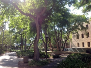 Another view of Caltech campus.