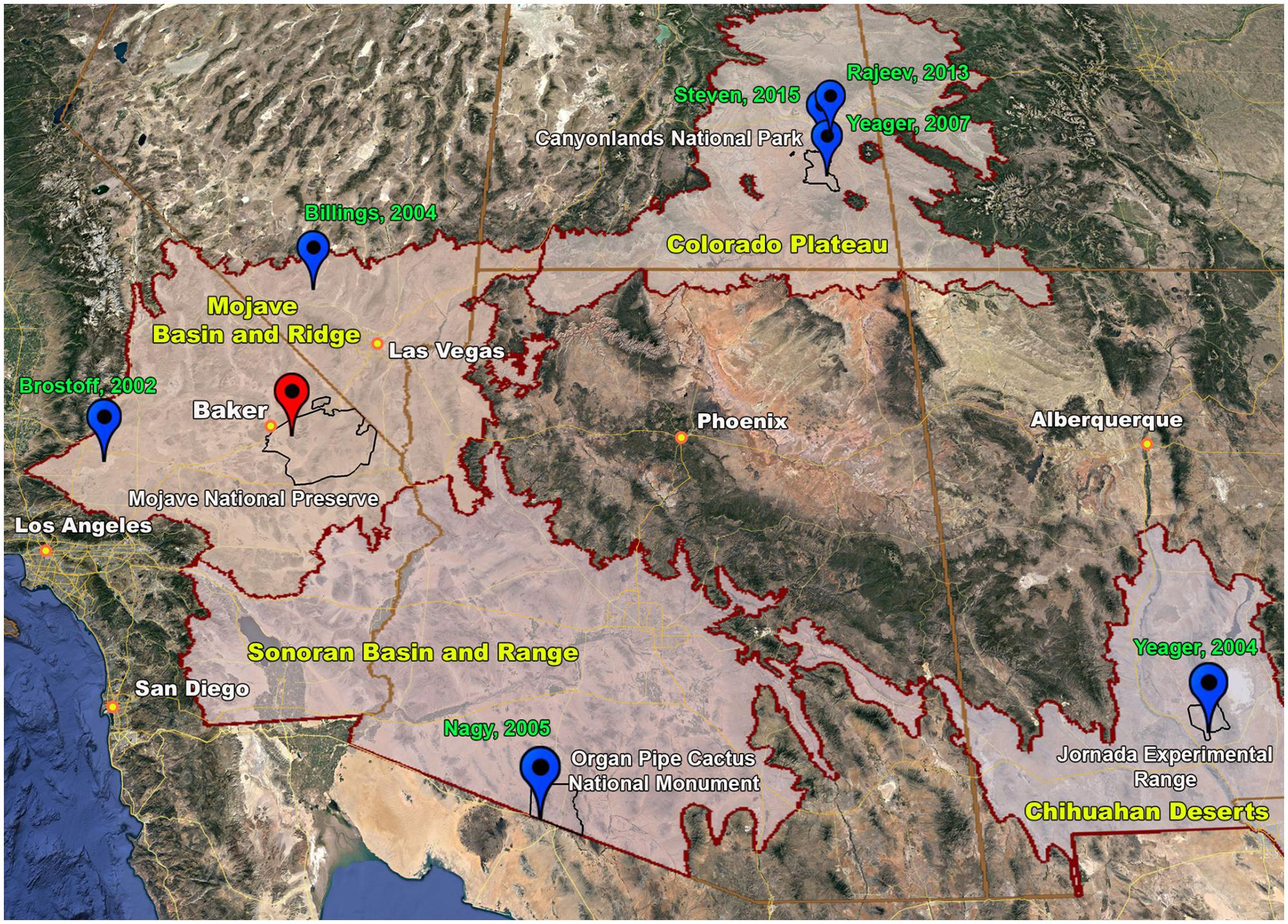 Biological soil crust large map